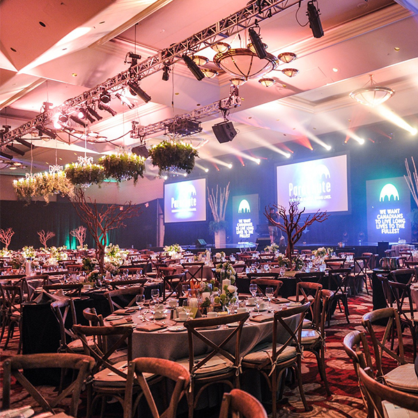 All Events Africa Gala Dinners and Banquettes